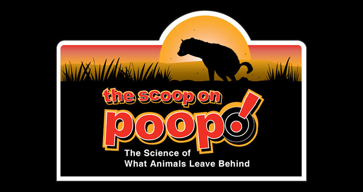 The Scoop on Poop | Traveling Exhibition by Peeling Productions